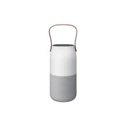 Колонки Samsung EO-SG710C Bottle design gray (Bluetooth)