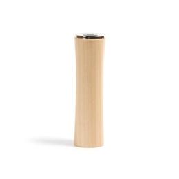 Внешний аккумулятор Present PA-06 Schima (USB, 3000 mAh)