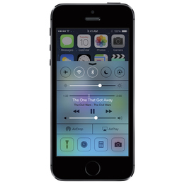 Сотовый телефон iPhone 5S 64GB Space Grey A1533 (ME438)