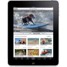 Планшетный компьютер Apple iPad 16GB (MB292, WiFi)